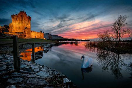 Mindfulness Ireland